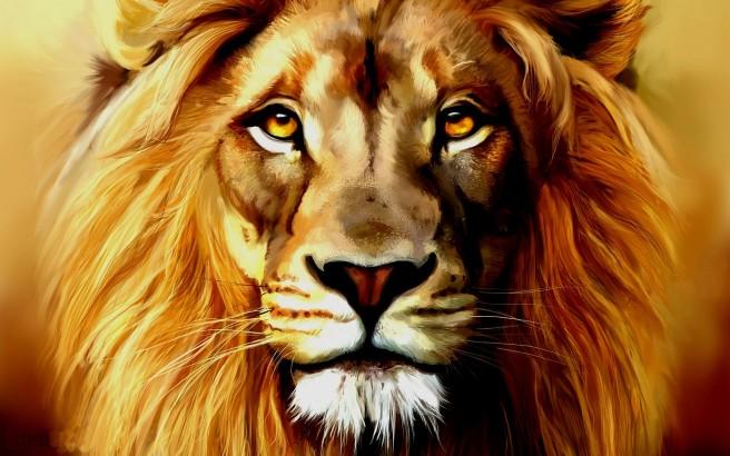 Lion-Face-HD