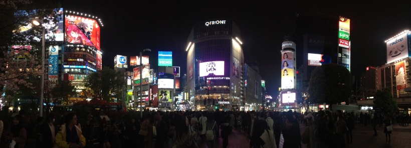 Shinjuku At Night 2015